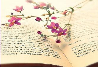 Книги для начинающих писателей