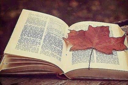 какие книги должен прочитать каждый уважающий себя