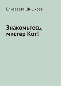 Елизавета Шишкова «Знакомьтесь, мистерКот!»
