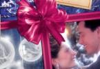 Марина Порошина «Почти карнавальная история»
