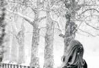 Алина Политова «Снег»