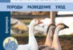 Любовь Стрельникова «Гуси и утки»