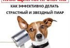 Роман Масленников «Пиарщик на прокачку: как эффективно делать страстный и звездный пиар»