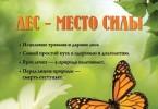 Юрий Новиков «Лес – место силы»