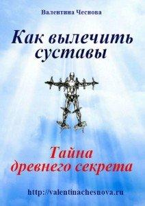 «Как вылечить суставы» Валентина Чеснова