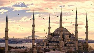 Писатели Турции